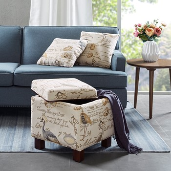 Shelley Square Storage Ottoman with Pillows