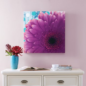 Vibrant Violet Gel Coat Canvas