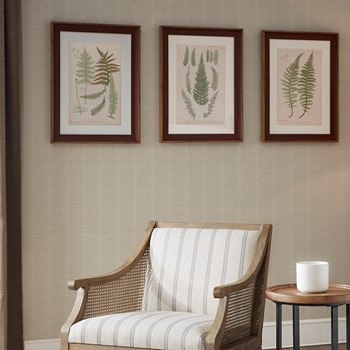 Lady Fern Collection Single Mat Framed Graphic 3 Piece Set